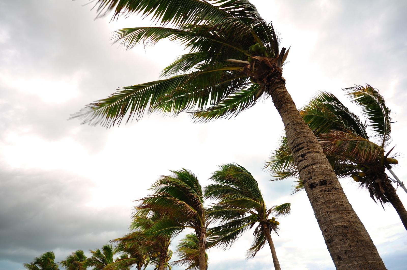Im Dezember wurde Formentera von bis zu 100 km/h schnellen Windböen überrascht.