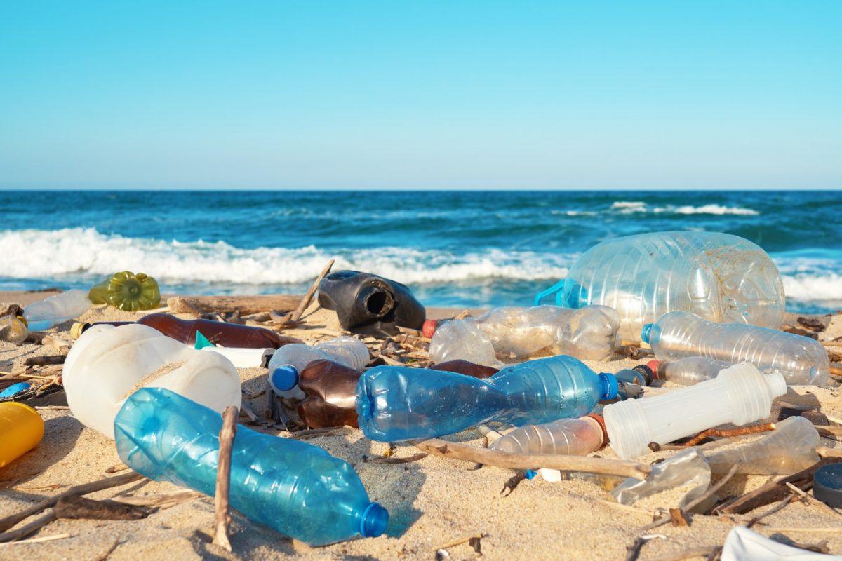 Viele Strände Formenteras sind mittlerweile verschmutzt.